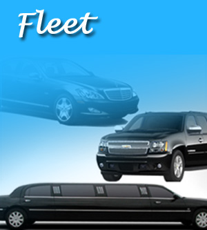 Airport Limo Fleet